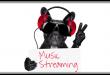 6 Meilleures applis de streaming audio pour Android et iOS pour 2019