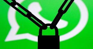 WhatsApp est devenu une plateforme pornographique